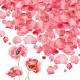 Watercolor petals of a poppy - 97317338