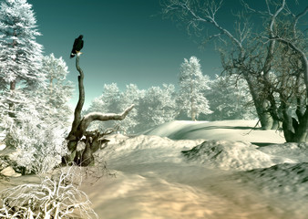 Obraz na Szkle Do jadalni Winter Wonderland SCene, 3d CG