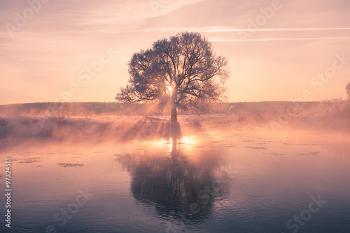 Obraz Foggy winter sunrise - fototapety do salonu