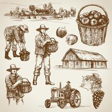 Farmland, Harvest On The Farm
