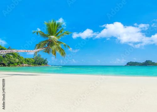 Fotografie, Obraz  Palm beach Baie Lazare, Seychelles, Mahe island, Indian ocean pa