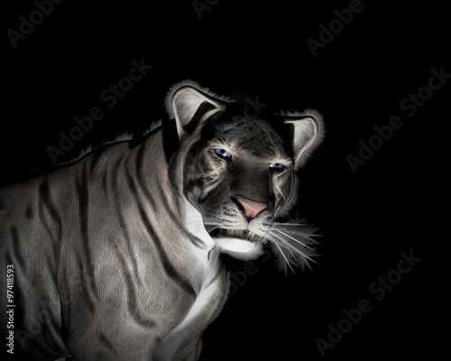 Staande foto Afrika White Tiger at black background