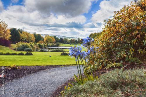Ireland autumn golf area Poster