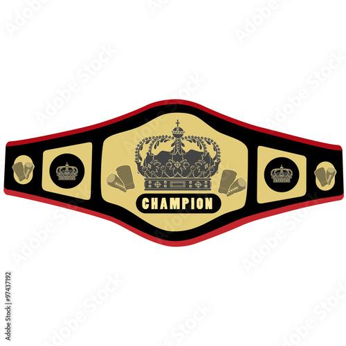 Fotografía  Boxing belt