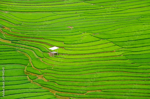 Photo sur Toile Les champs de riz argriculture of green terraced rice fields in mountain of sapa vietnam in aerial view