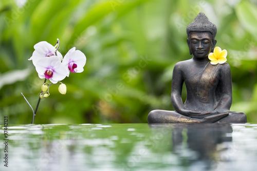 Fototapeta Boudha avec fleur