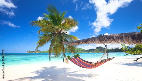 tropischer Strand mit Palmen und Hängematte Wallpaper Mural
