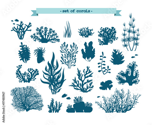 Underwater set of corals and algae.