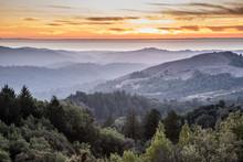 Hazy Forest Rolling Hills Ocean Sunset Of Santa Cruz Mountains. Russian Ridge Open Space Preserve, San Mateo County, California, USA.
