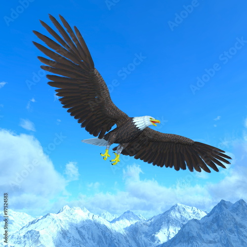 In de dag Eagle 白頭鷲