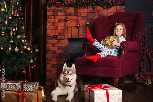 little girl and siberian husky dog playing with presents in christmas decorations