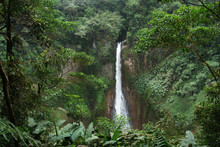 La Fortuna Waterfall In A Forest, Alajuela Province, Costa Rica