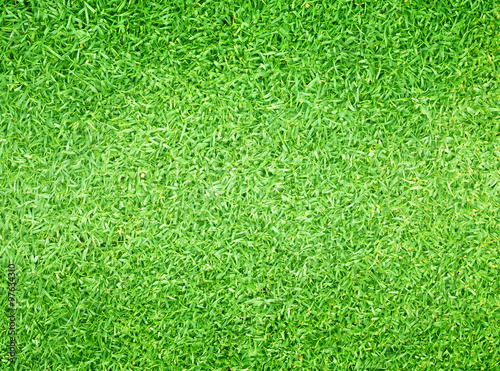 Fototapeta Golf Courses green lawn obraz na płótnie