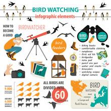 Bird Watching Infographic Temp...