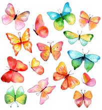 15 Watercolor Butterflies In V...