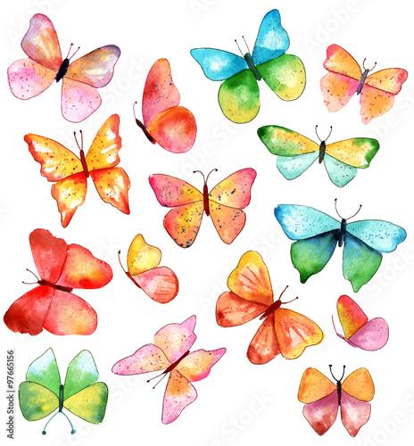 15-akwarela-motyle-w-roznych-kolorach-i-ksztaltach-na-bialym-backround