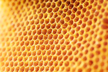 Honey Comb Pattern