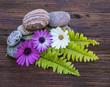 flores y piedras con hojas verdes