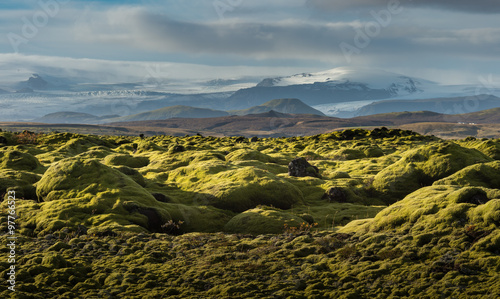 Tuinposter Zwart Grindavik Lava field at Iceland that cover by green moss snow mountain background in Autumn season