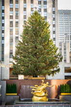 Landmark Rockefeller Plaza Christmas Tree In New York City