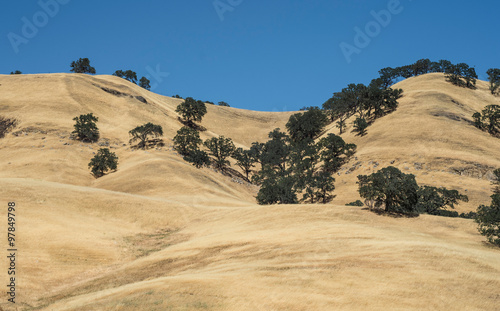 Tuinposter Heuvel California Coast Ranges grass hills
