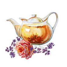 Teapot With Floral Tea. Watercolor Painting