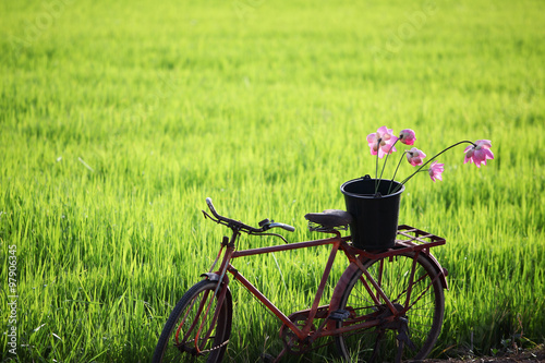 Fototapeten Natur classic bicycle with rural field background.