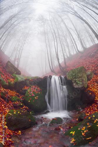 strumien-w-lesie