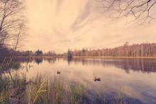 Idyllic Lake Scenery With Lure...