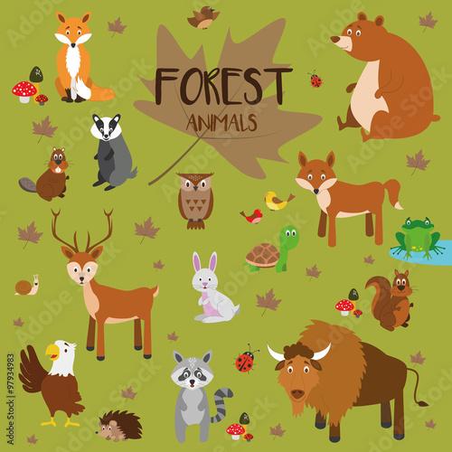 Conjunto de animales del bosque Zorro oso ardilla ciervo
