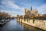 Fototapeta Fototapety Paryż - Katedra Notre-Dame, Paryż, Francja, Europa