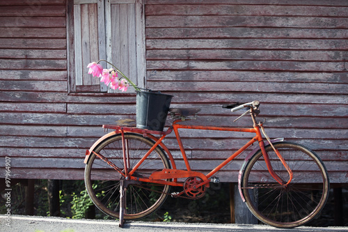 Foto op Plexiglas Fiets classic bicycle with grunge background.