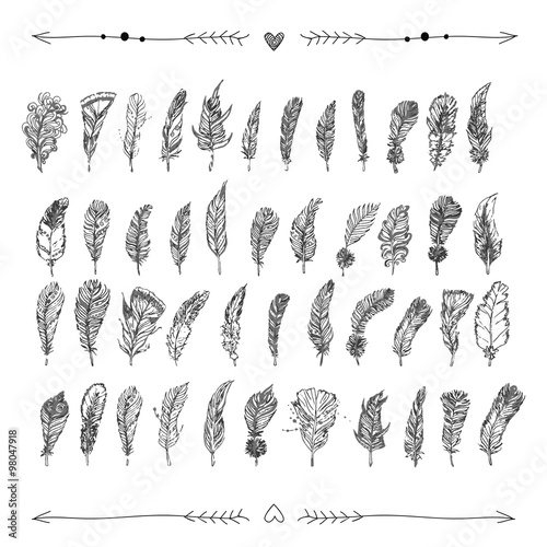 Fototapety, obrazy: Decorative hand drawn doodle feathers with hearts and arrows