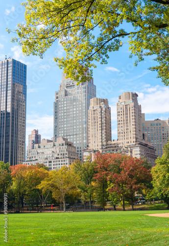 Printed kitchen splashbacks Khaki Foliage in Central Park, New York City