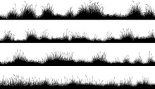 Horizontal Banners Of Meadow S...