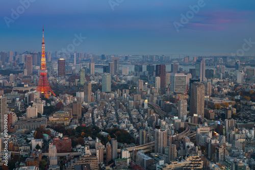 Poster Tokyo Tokyo city aerial view with Tokyo Tower after sunset, Japan