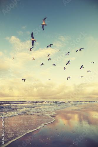 Vintage stylizowane latające ptaki nad plażą o zachodzie słońca.