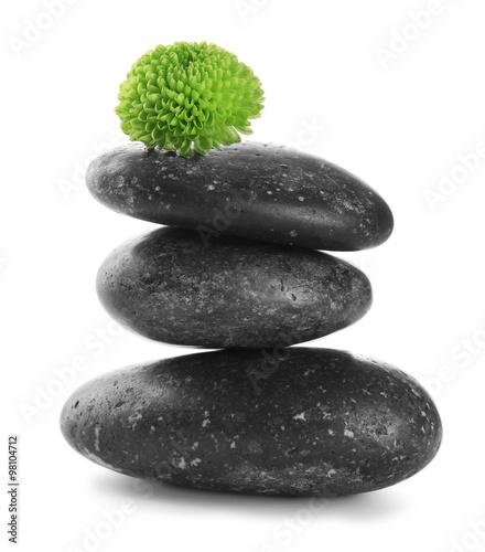 czarni-zdrojow-kamienie-i-zielony-kwiat-odosobneni-na-whi