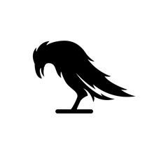 Black Crow Silhouette On The White Background