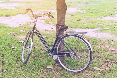 Deurstickers Fiets bicycle vintage in garden with sunlight