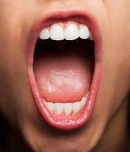 Prefect Teeth Of A Pretty Girl Closeup