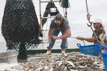 Deckhands Working On Fishing Boat