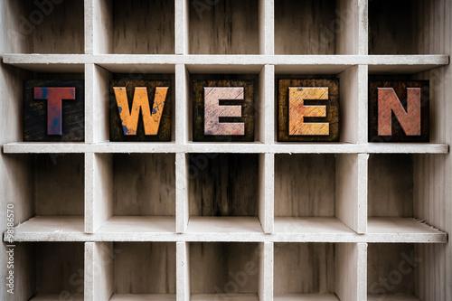Obraz na plátně  Tween Concept Wooden Letterpress Type in Drawer