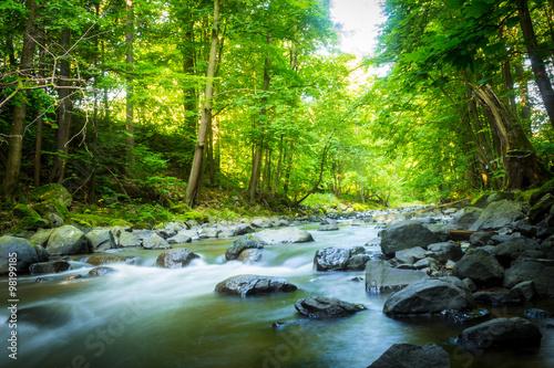 przepiekny-marzycielski-gorski-potok