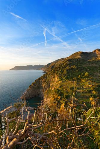 Ligurian Coastline - Cinque Terre Italy / The coast of Liguria near Corniglia, La Spezia Poster
