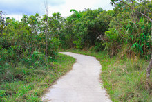 Street On The Mountain At Phu ...