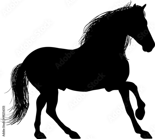 A Silhouette Of A Horse Entire Drawing Of A Horse S Figure In Black Color On A White Background Buy This Stock Vector And Explore Similar Vectors At Adobe Stock Adobe Stock