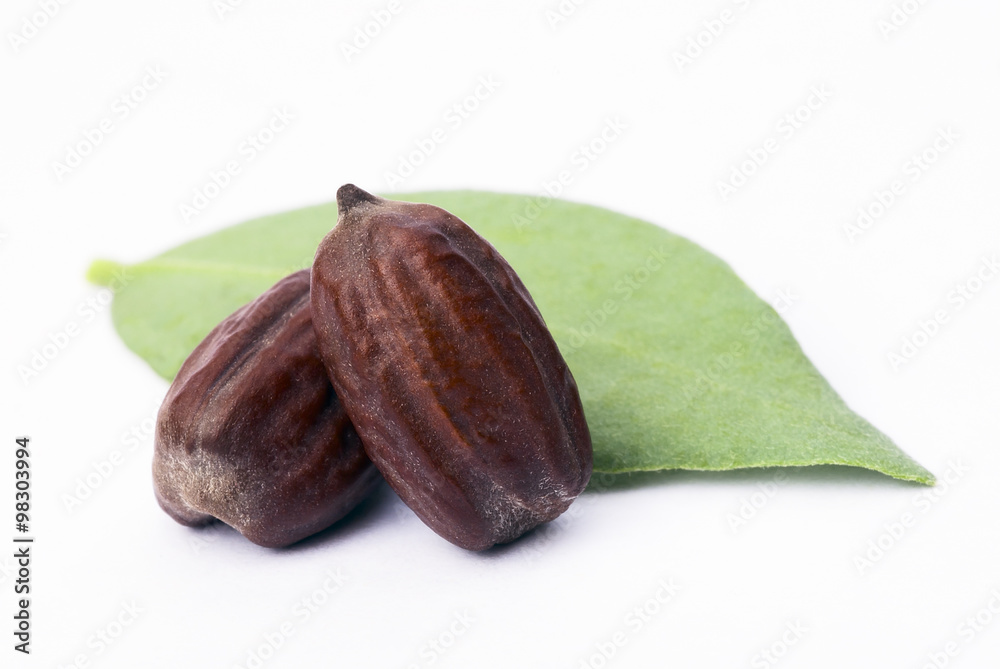 Fototapety, obrazy: Jojoba (Simmondsia chinensis) leaves and seeds