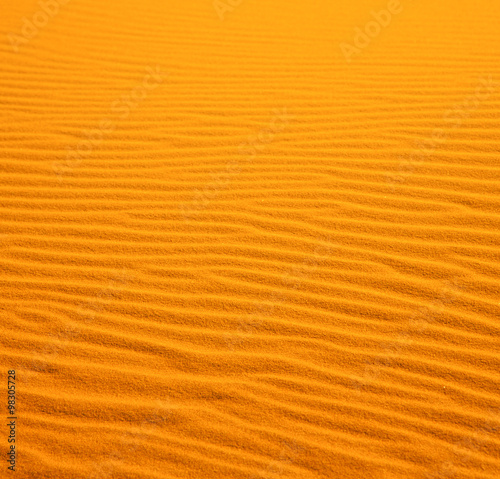 Poster de jardin Desert de sable in the yellow desert of morocco lonely dune hill