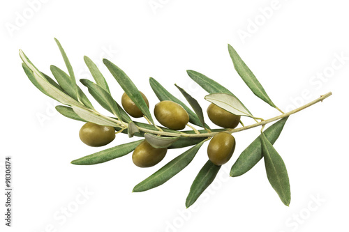 Keuken foto achterwand Olijfboom Olive branch with green olives on a white background isolated